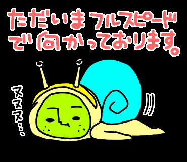 なしお7-2