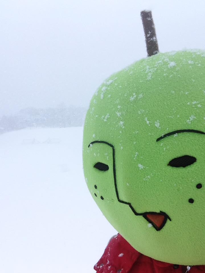 nasioyukimaturi3