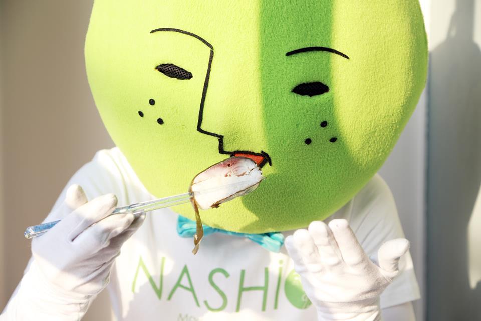 nashi30